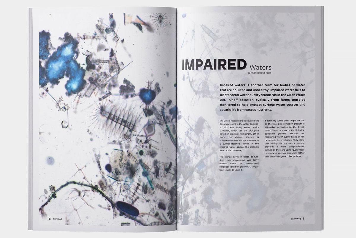 micromag-scientific-journal-publication-artical-2-image