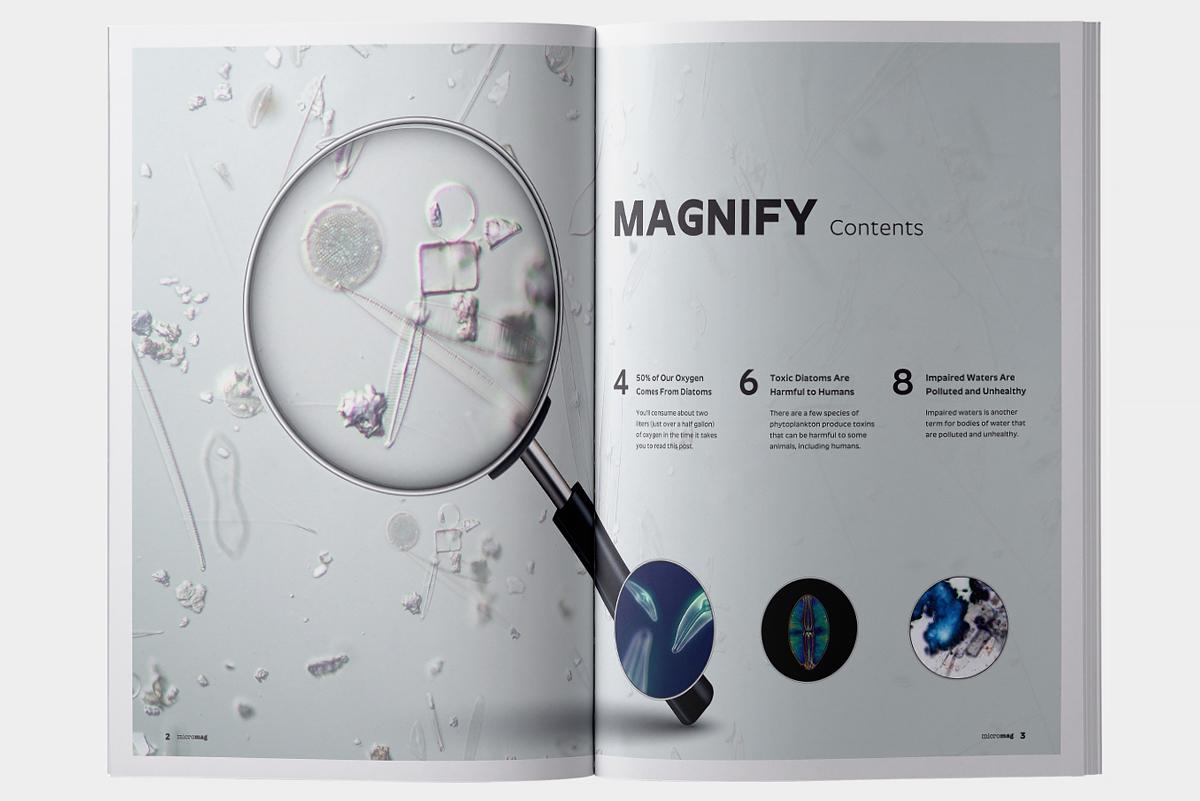 micromag-scientific-journal-publication-contents-image